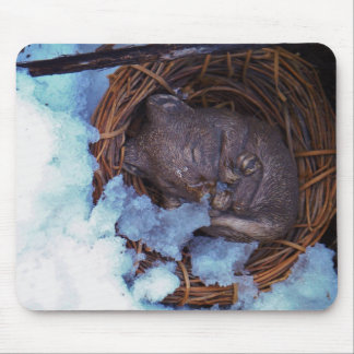 cute little mouse in the snow mouse pad
