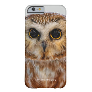 Cute Little Northern Saw Whet Owl Barely There iPhone 6 Case