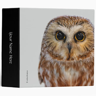 Cute Little Northern Saw Whet Owl Binder