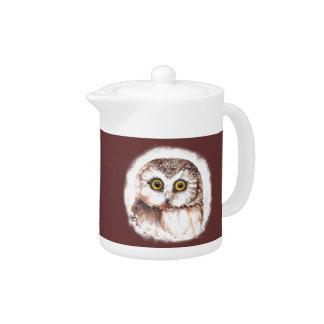 Cute Little Owl Watercolor Bird, Animal Teapot