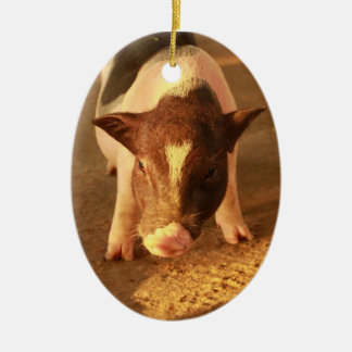 Cute Little Pig Ceramic Ornament