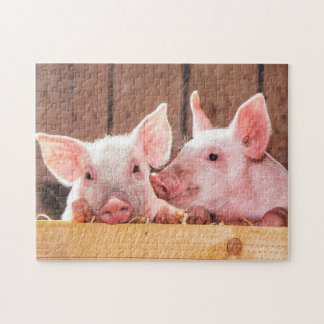 Cute Little Pigs Jigsaw Puzzle