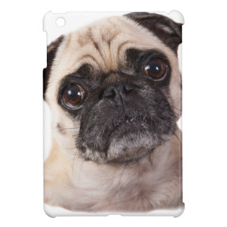 cute little pug dog iPad mini case