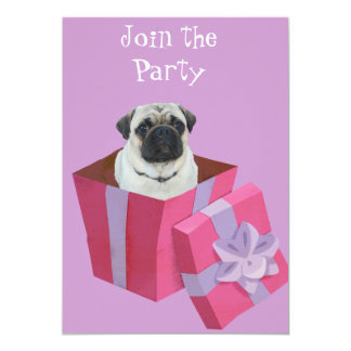 Cute little Pug Present Announcement