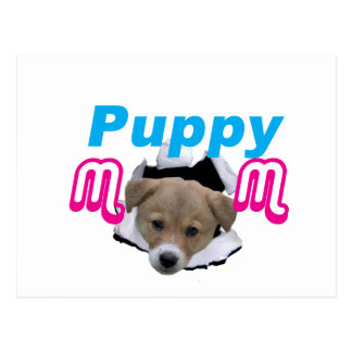 Cute little Puppy poppin out! Postcard