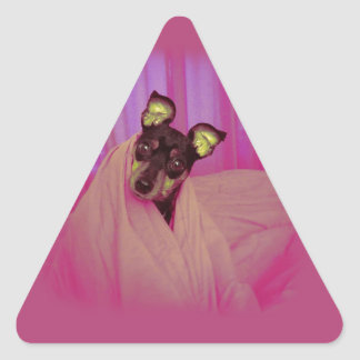 Cute little puppy triangle sticker