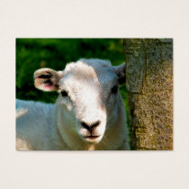 CUTE LITTLE SHEEP BUSINESS CARD