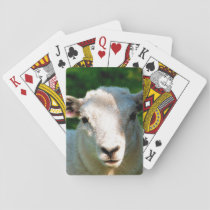 CUTE LITTLE SHEEP PLAYING CARDS