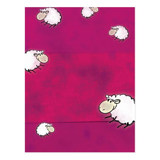 cute little sheep postcard