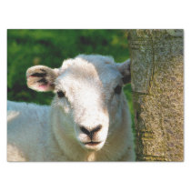 CUTE LITTLE SHEEP TISSUE PAPER