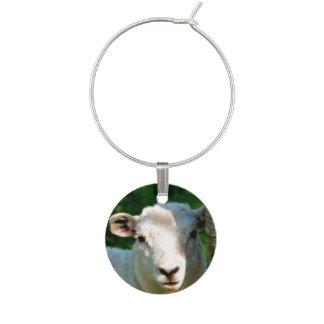 CUTE LITTLE SHEEP WINE GLASS CHARM