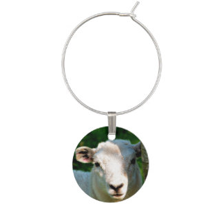 CUTE LITTLE SHEEP WINE GLASS CHARMS