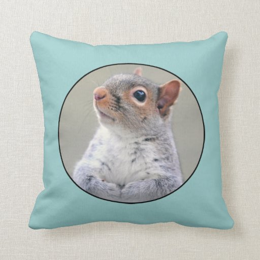 Cute Little Soft and Fluffy Gray Squirrel Pillows Zazzle