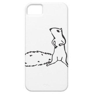 Cute little squirrel iPhone 5 cases