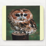 Cute Little Wild Owl Mouse Pads