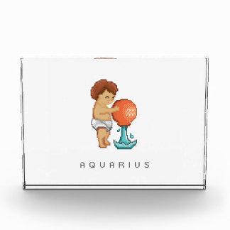 Cute Little Zodiac Acrylic Plaque Award
