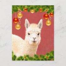 Cute Llama Christmas Holiday Postcard