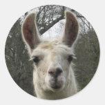 Cute Llama Stickers