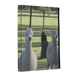 Cute Llamas iPad Folio Case