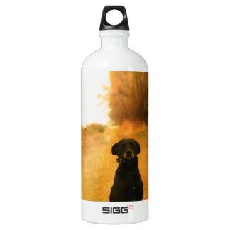 Cute lonely dog water bottle