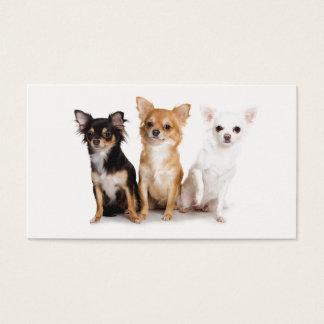 Cute Long Hair Chihuahua Puppes Business Card