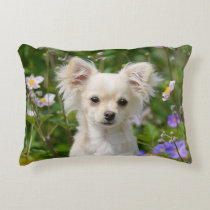 Cute long-haired Chihuahua Dog Puppy Photo - Throw Accent Pillow