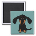Cute Long Haired Dachshund Puppy 2 Inch Square Magnet