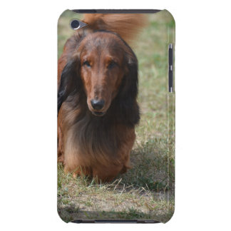 Cute Long Haired Daschund iPod Touch Covers