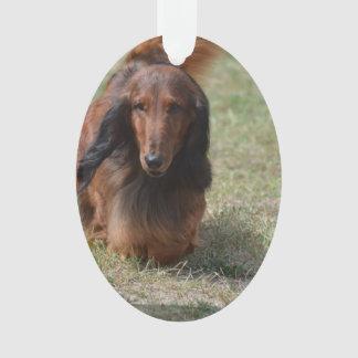 Cute Long Haired Daschund Ornament