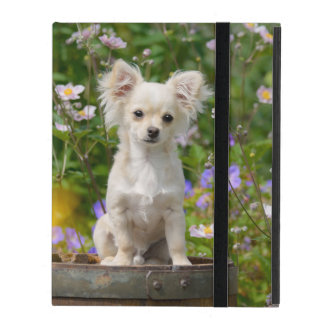 Cute longhair cream Chihuahua Dog Puppy Pet Photo- iPad Cover