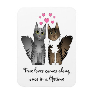 Cute Longhaired Cats - True Love Rectangular Photo Magnet