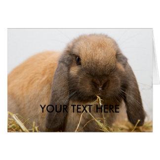 Cute lop eared bunny card