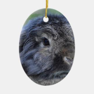 Cute lop eared rabbit ceramic ornament