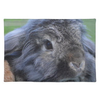 Cute lop eared rabbit cloth placemat