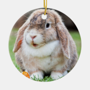Cute Lop Eared Rabbit In Grass With Carrot Ceramic Ornament
