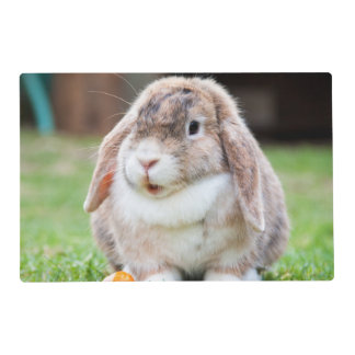 Cute Lop-Eared Rabbit in Grass with Carrot Placemat