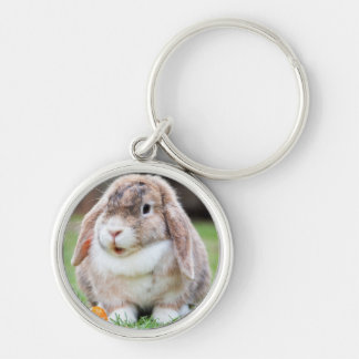 Cute Lop-Eared Rabbit in Grass with Carrot Silver-Colored Round Keychain