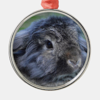 Cute lop eared rabbit round metal christmas ornament