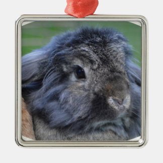 Cute lop eared rabbit square metal christmas ornament