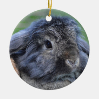 Cute lop eared rabbit Double-Sided ceramic round christmas ornament