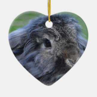 Cute lop eared rabbit Double-Sided heart ceramic christmas ornament