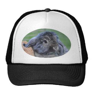 Cute lop eared rabbit trucker hat