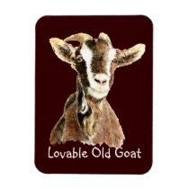 Cute Lovable Old Goat, Farm Animal Humor Magnet