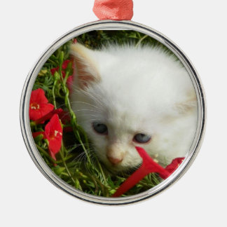 Cute Lovely Kitty, Premium Round Ornament