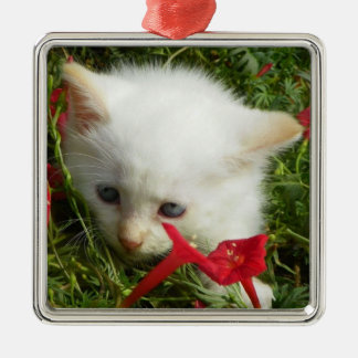 Cute Lovely Kitty, Premium Square Ornament