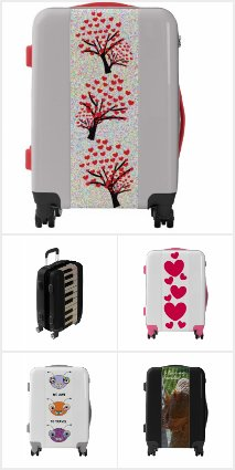 cool suitcases