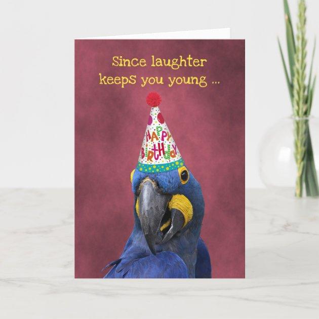 Studio Dalio - Cute Macaw Keep Laughing  Birthday Card