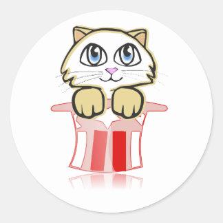cute magic cate classic round sticker