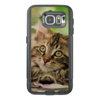 Cute Maine Coon Cat Kitten Photo   on Commutercase OtterBox Samsung Galaxy S6 Case