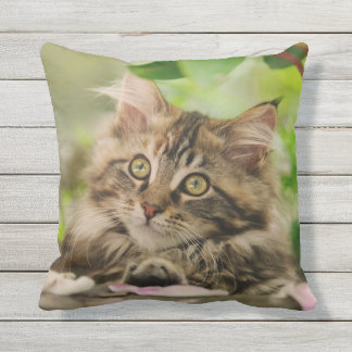 Cute Maine Coon Cat Kitten Portrait - for Outside Outdoor Pillow